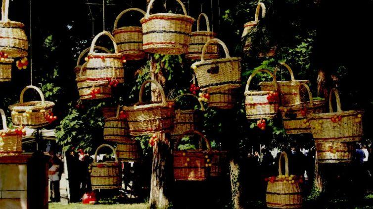 cherry-fiesta-kyustendil